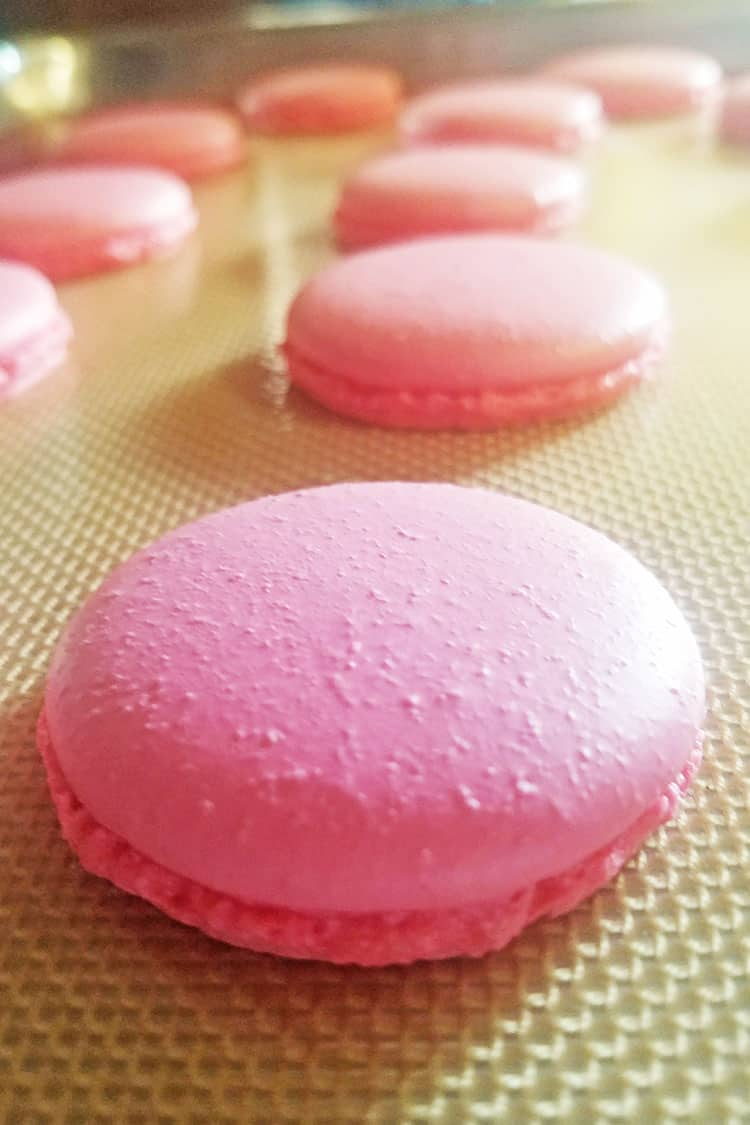 strawberry cheesecake macarons piped onto silicone mat
