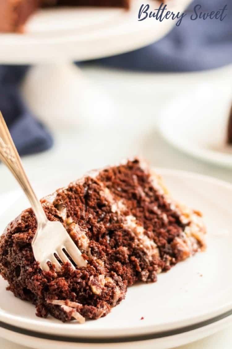 German Chocolate cake on white plate