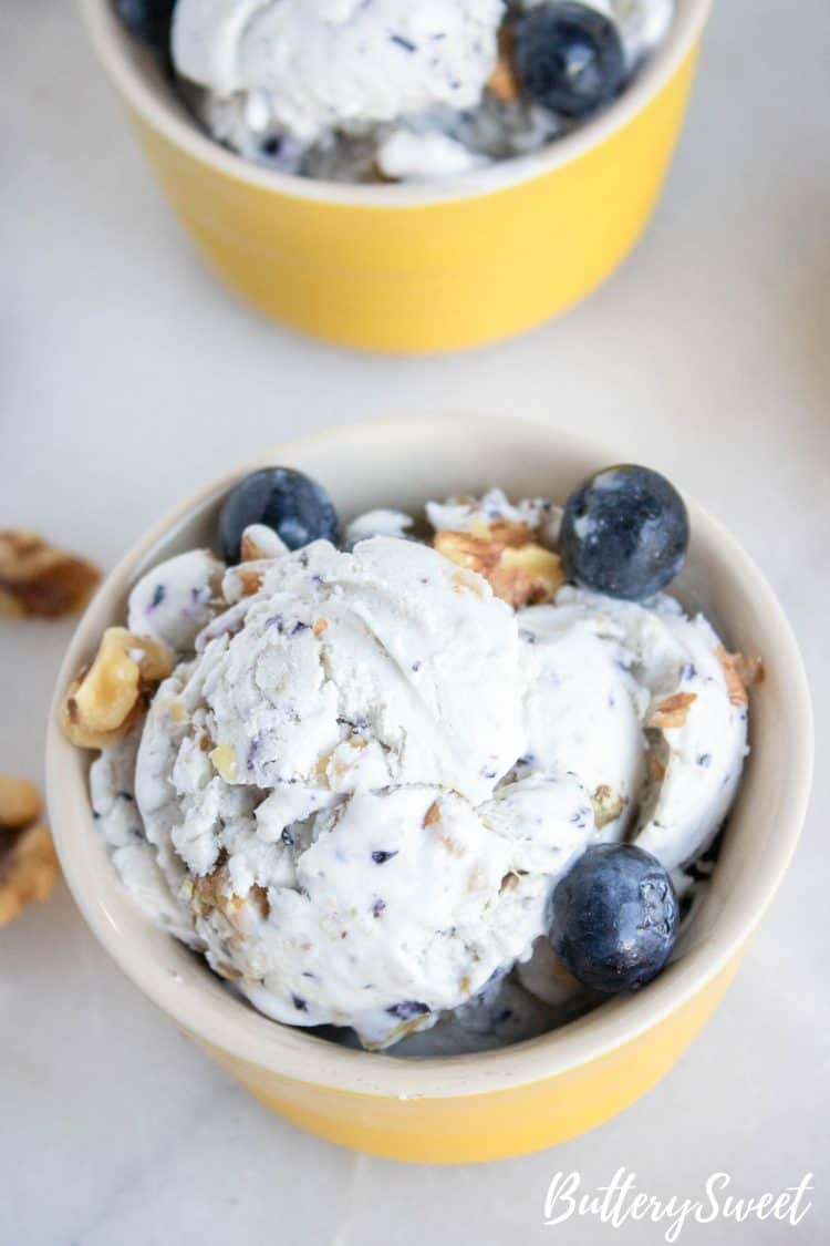 No-Churn Blueberry Walnut Ice Cream in a bowl with fresh blueberries and chopped walnuts