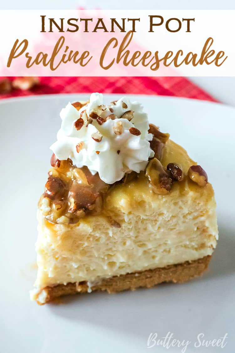 A slice of Instant Pot Praline Cheesecake with whipped cream